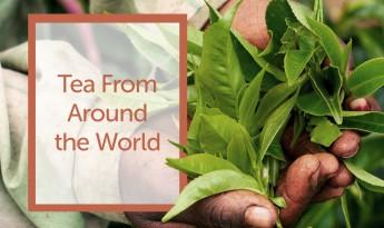 Tea From Around The World